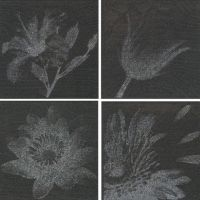 Decor Sophistication Mix Black